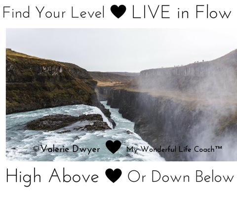 Find Your Level Live in Flow